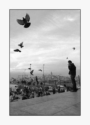 Gökte kuşların kardeşliği / Yerde kurtların... DAĞLARCA...